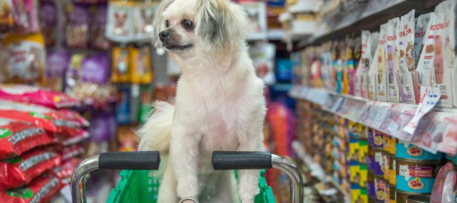 Achats de produits pour animaux en ligne